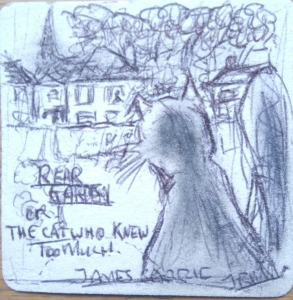 Rear Garden - Rough Sketch on Beer Mat